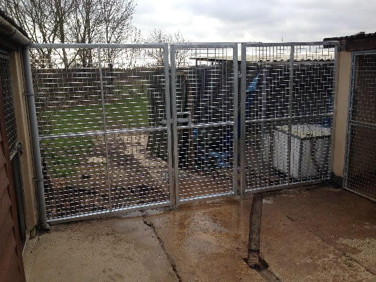 Commercial Kennel Gate